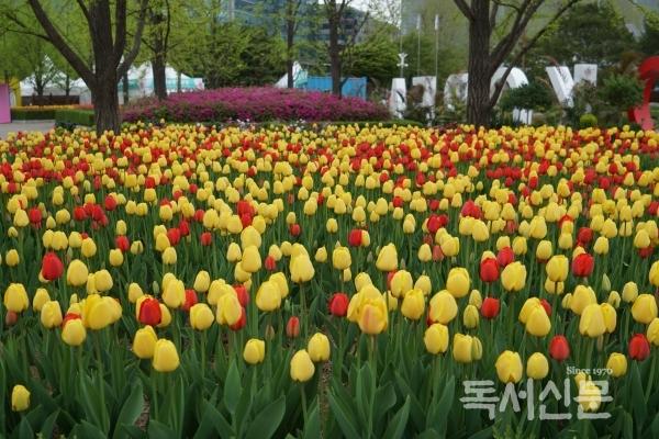 고양국제꽃박람회장.